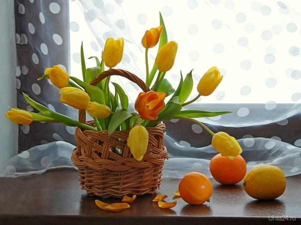 Натюрморт с тюльпанами и фруктами Разное Ухта