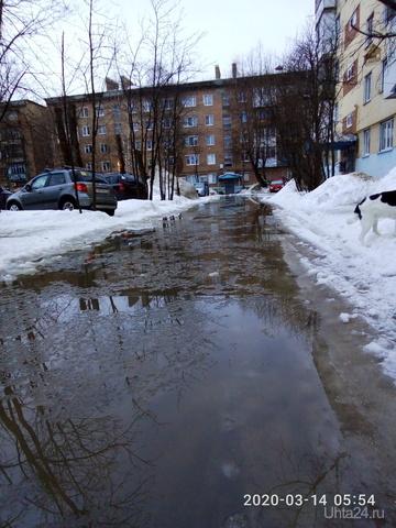 Ухтинское озеро Байкал Проблемы Ухты Ухта