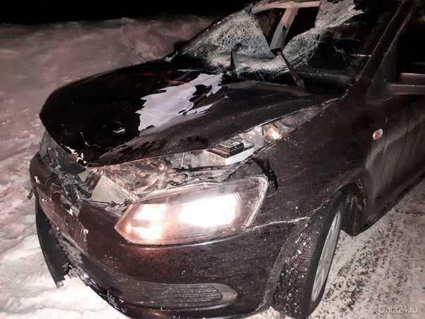 В Сосногорском районе в ДТП погибла женщина - пешеход УХТА24, ПЕРВЫЙ СПРАВОЧНЫЙ ПОРТАЛ УХТЫ Ухта