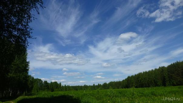 Сегодня день наблюдения за облаками, понаблюдаем вместе! Природа Ухты и Коми Ухта