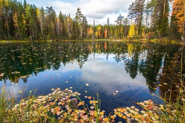 осень на Параськиных озёрах Природа Ухты и Коми Ухта