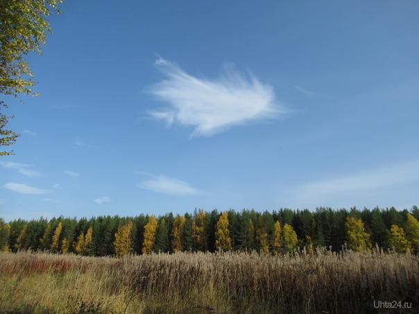 Понравилось  облачко, такое пушистое и воздушное. Природа Ухты и Коми Ухта
