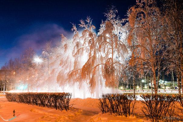 Локальный выброс пара пр. Космонавтов создал локальное заиндевение деревьев Улицы города Ухта