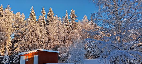 зима на дачах Природа Ухты и Коми Ухта