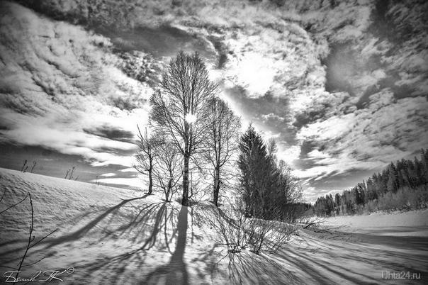 зима, солнце, монохром Природа Ухты и Коми Ухта