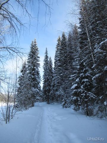 По тропиночке, да            вдоль реченьки прогуляемся ... Свежим воздухом подышим ... Природой насладимся! Природа Ухты и Коми Ухта