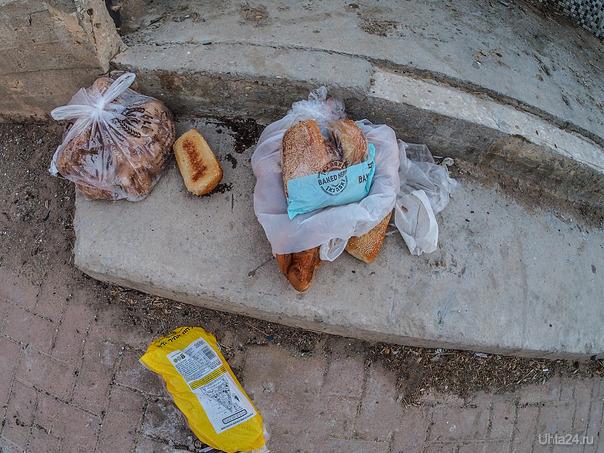 Беер-Шева, август 2021г.Хлеб голодным. Мир глазами ухтинцев Ухта