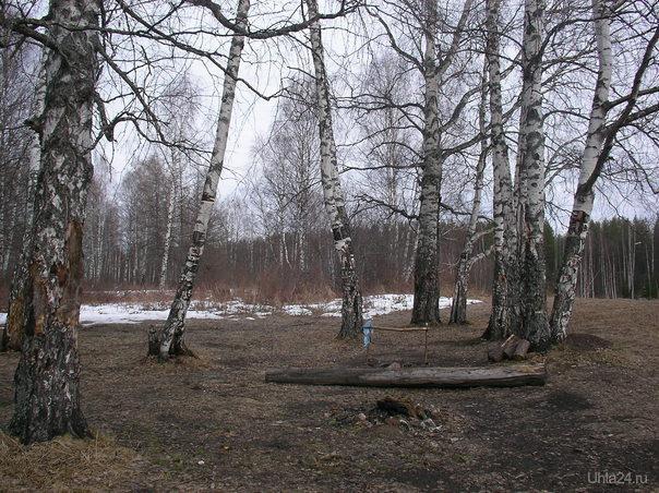 Природа Ухты и Коми Ухта