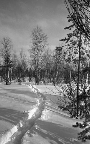 196? г. Фото Белых В.А. Природа Ухты и Коми Ухта