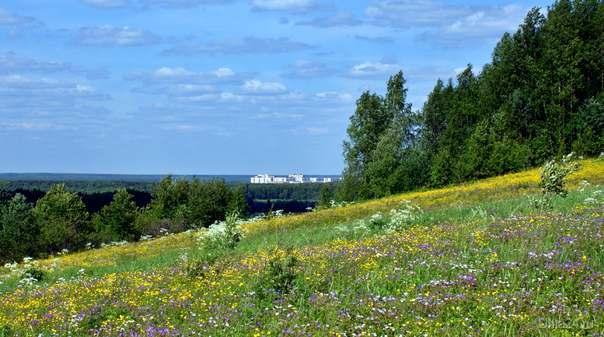 Ухта. Вид с полей Шудаяга Природа Ухты и Коми Ухта