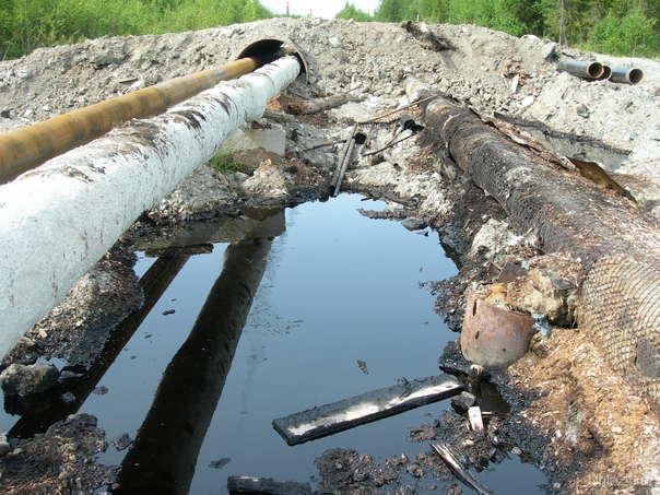 Вот здесь видно как не загрязняется природа. На Яреге. Природа Ухты и Коми Ухта
