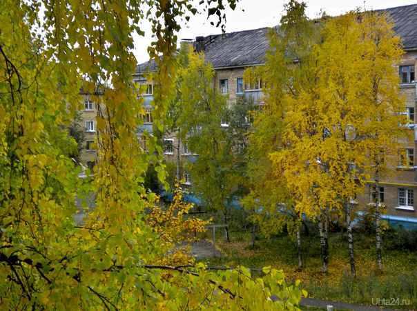 Осень...золотая... Улицы города Ухта