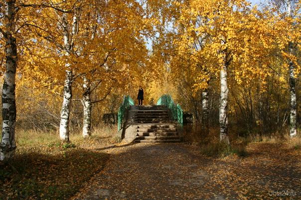 золотая осень  Ухта