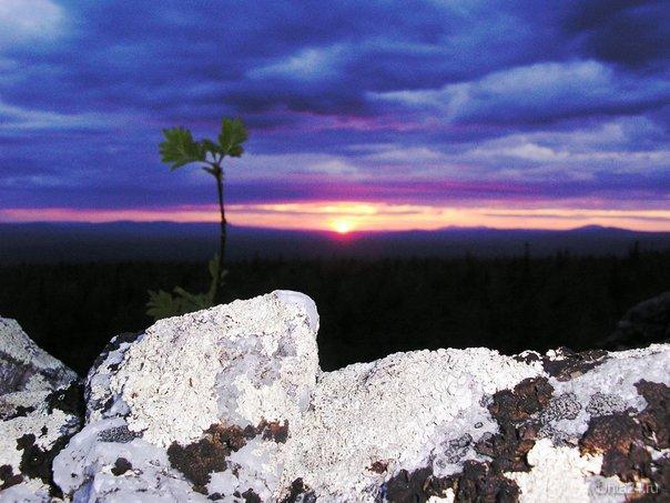 Закат на плато. Мир глазами ухтинцев Ухта