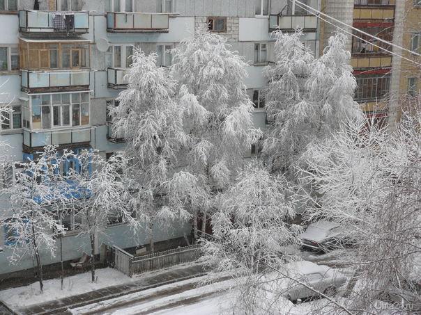 Зима, красиво, но холодно... Природа Ухты и Коми Ухта
