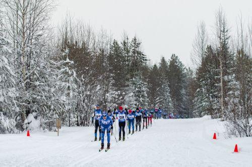 Декада спорта и здоровья в Ухте завершилась трёхдневными лыжными соревнованиями